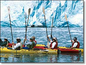 guided sea kayaking seward ak